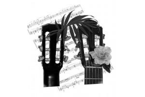 Ноты на грифе гитары